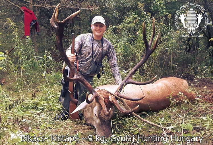 Canadian hunter in Bikács-Kistápé with a 9kg stag